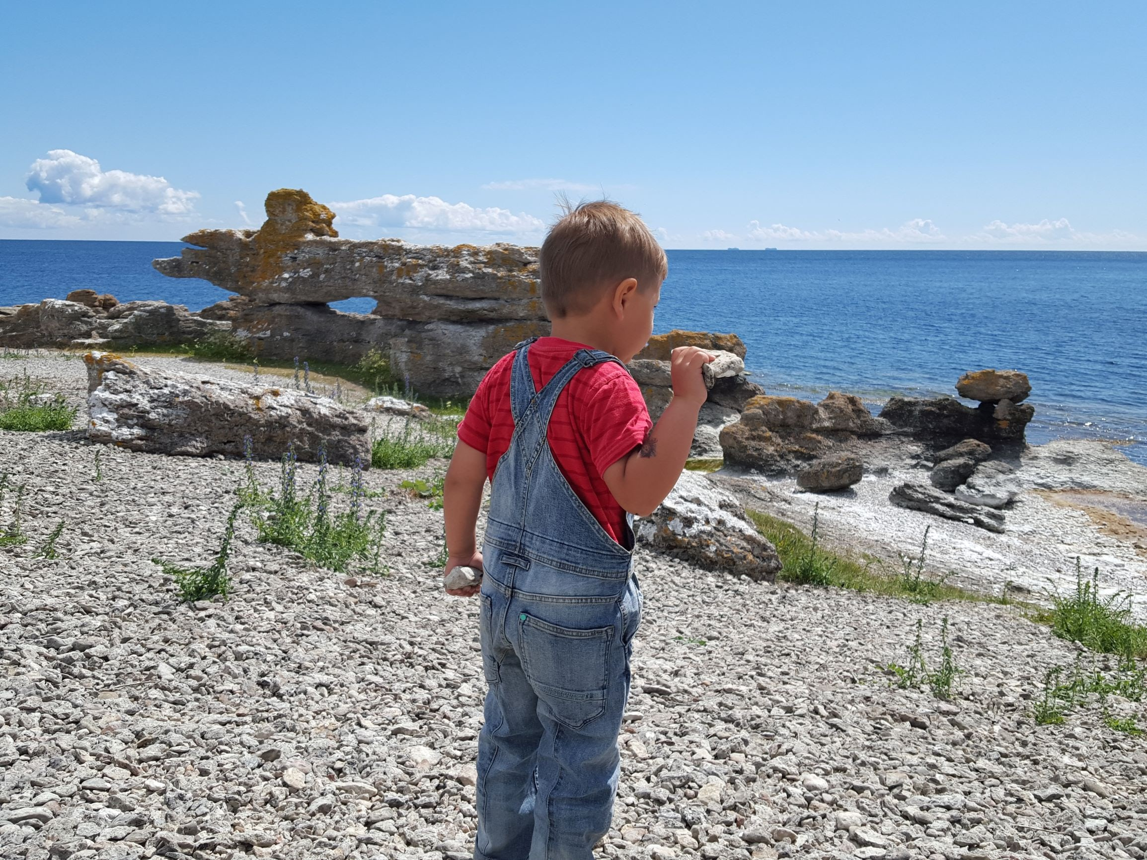 Barn på gotländsk strand