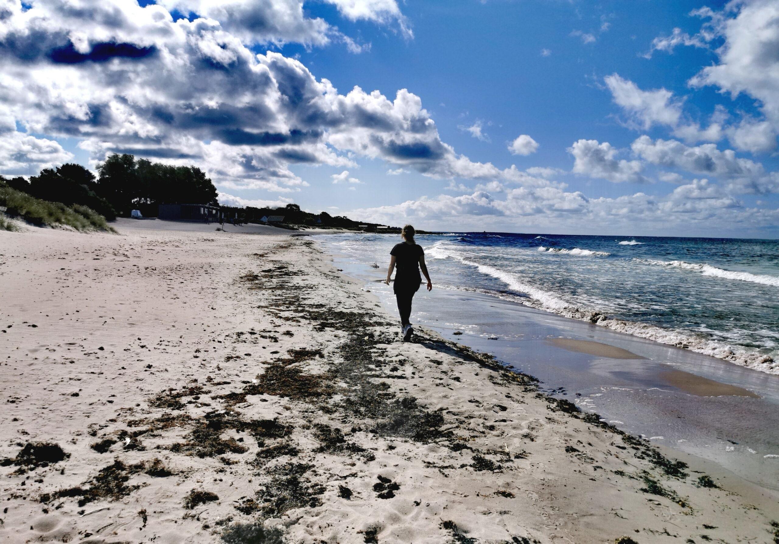 Vandring längs Tofta Strand
